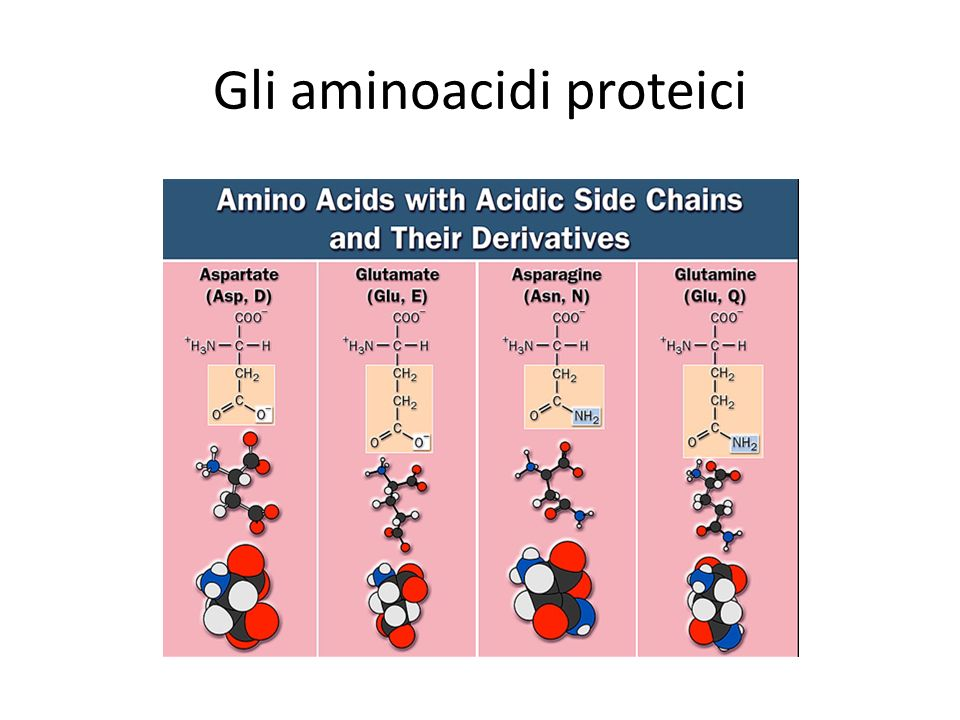 Gli aminoacidi proteici