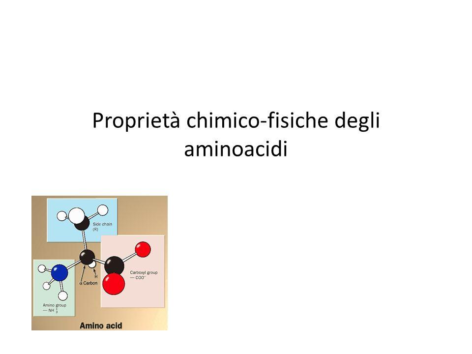 Proprietà chimico-fisiche degli aminoacidi