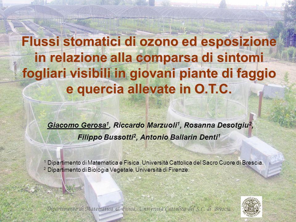 Filippo Bussotti2, Antonio Ballarin Denti1