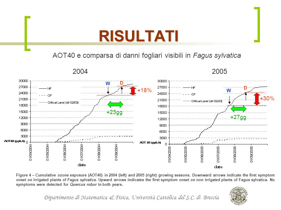 RISULTATI AOT40 e comparsa di danni fogliari visibili in Fagus sylvatica. 2004. 2005. W. D. D.