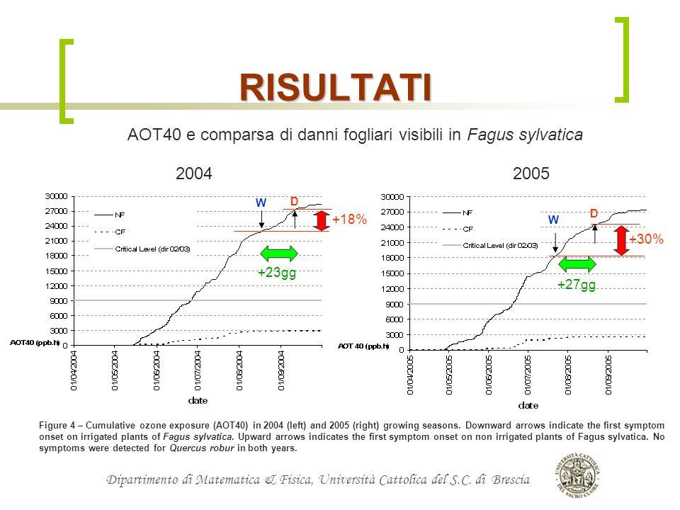RISULTATIAOT40 e comparsa di danni fogliari visibili in Fagus sylvatica. 2004. 2005. W. D. D. +18% W.