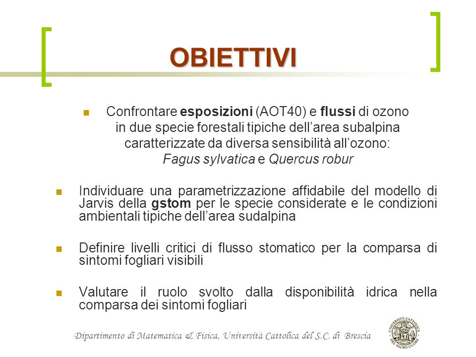 OBIETTIVI Confrontare esposizioni (AOT40) e flussi di ozono
