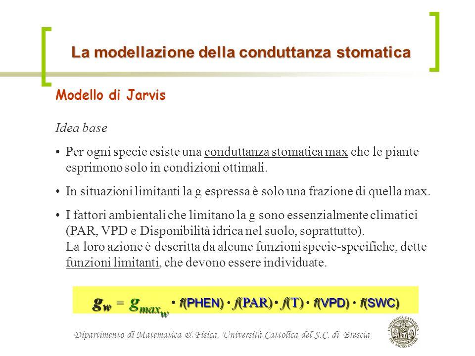 La modellazione della conduttanza stomatica