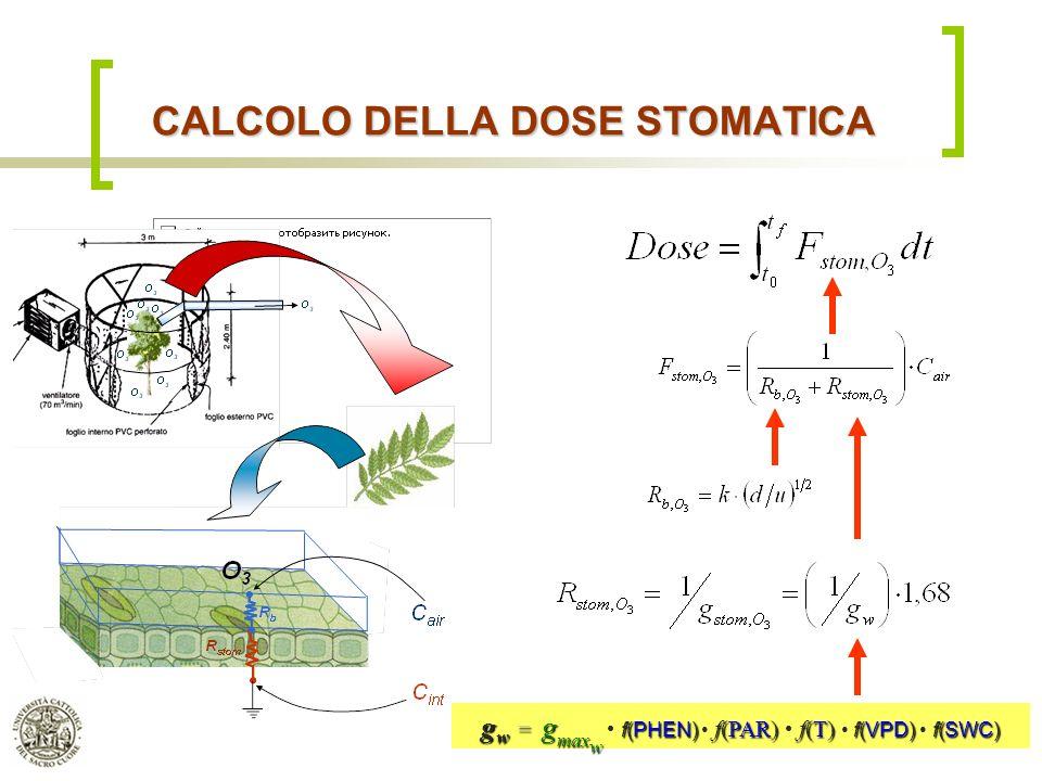 CALCOLO DELLA DOSE STOMATICA
