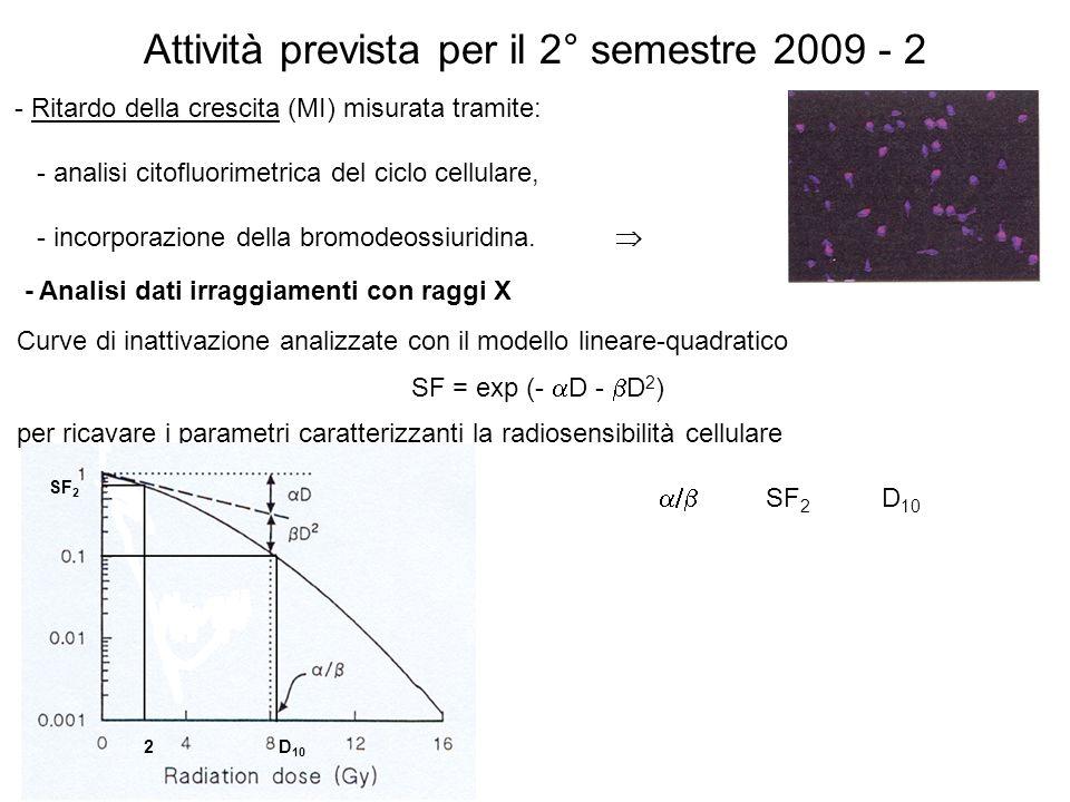 Attività prevista per il 2° semestre 2009 - 2