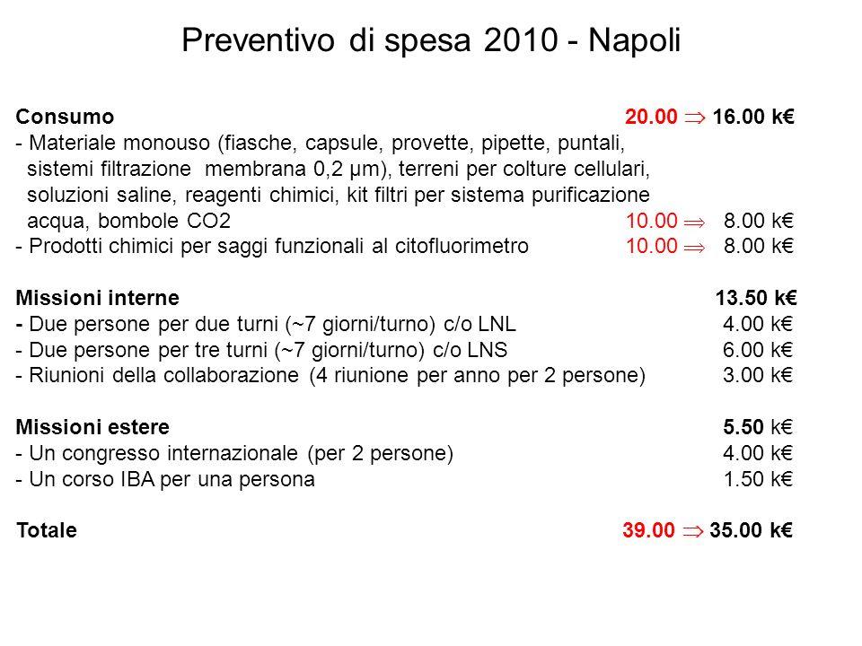 Preventivo di spesa 2010 - Napoli