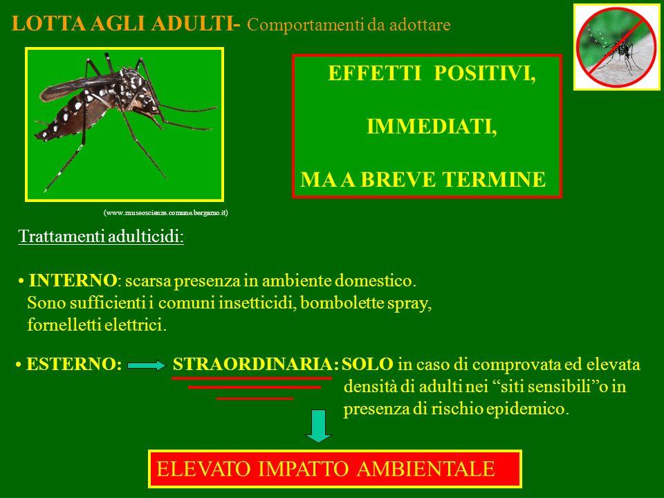 LOTTA AGLI ADULTI- Comportamenti da adottare