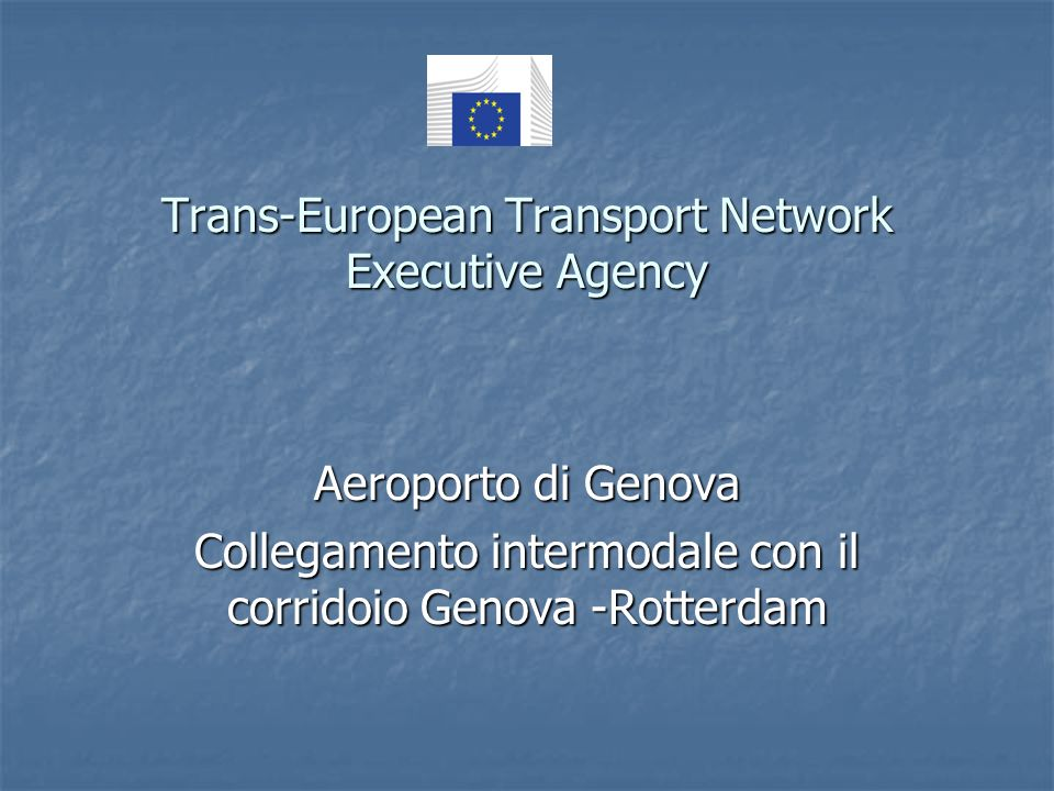 Trans-European Transport Network Executive Agency