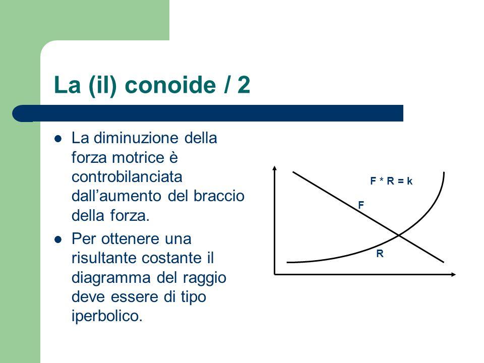 La (il) conoide / 2 La diminuzione della forza motrice è controbilanciata dall'aumento del braccio della forza.