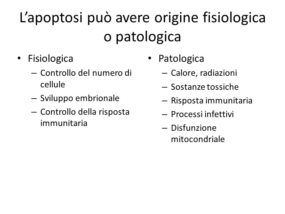 L'apoptosi può avere origine fisiologica o patologica