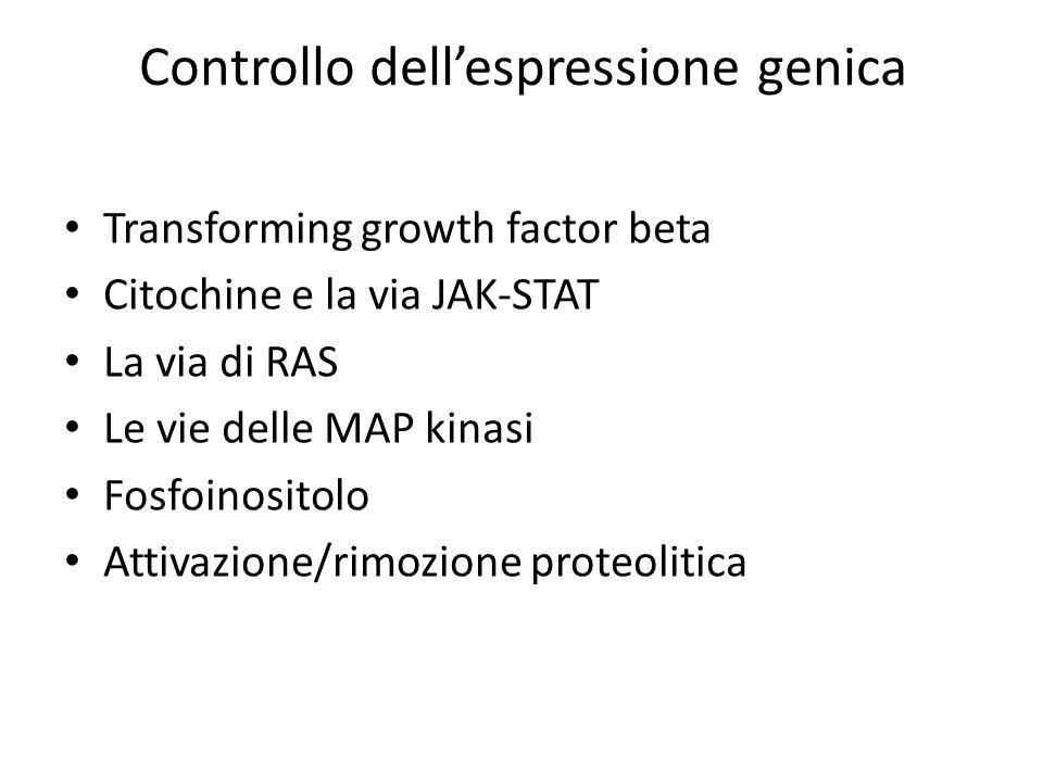 Controllo dell'espressione genica