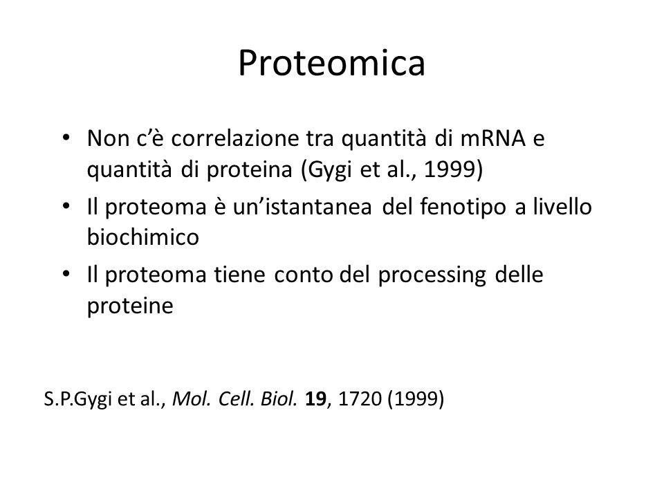 Proteomica Non c'è correlazione tra quantità di mRNA e quantità di proteina (Gygi et al., 1999)
