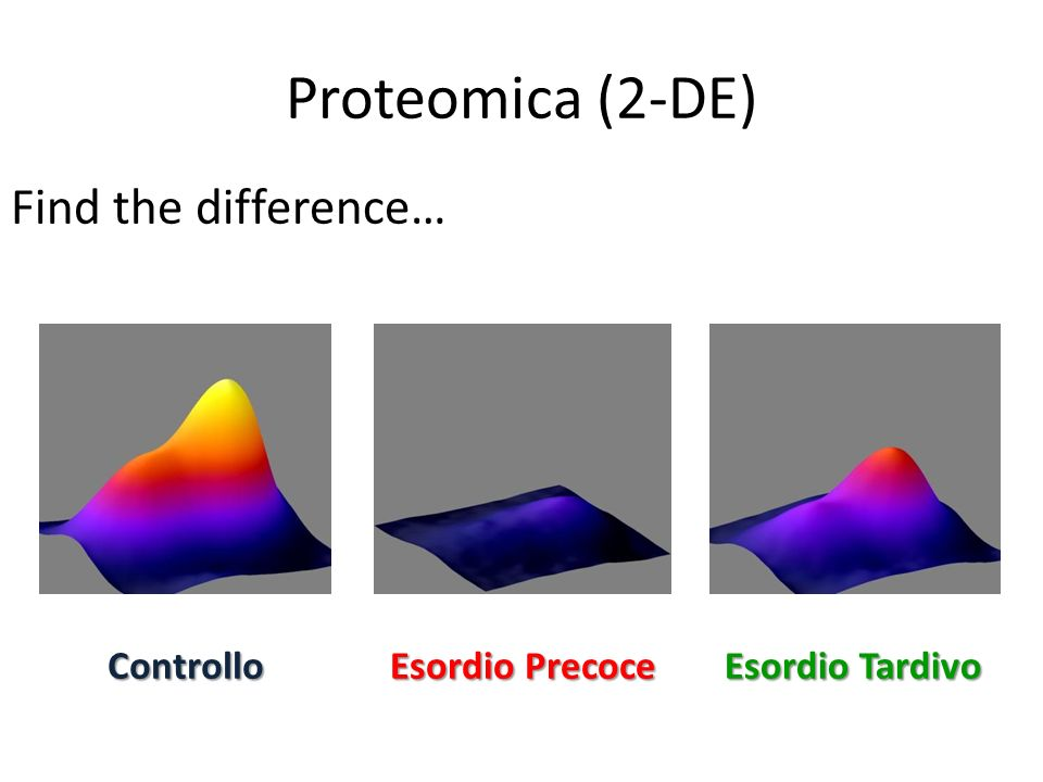 Proteomica (2-DE) Find the difference… Controllo Esordio Precoce