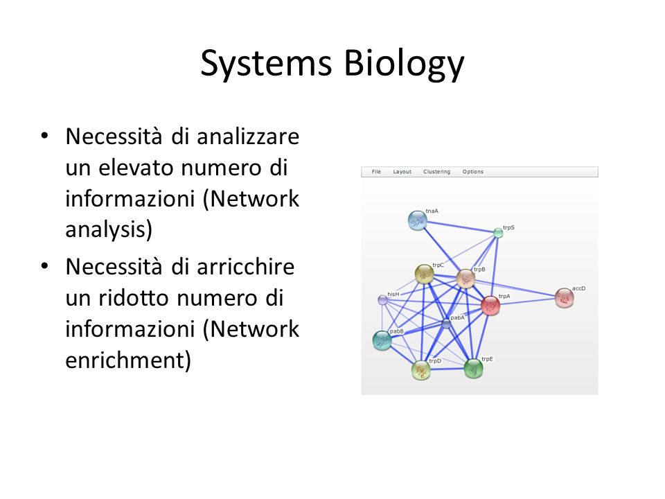 Systems Biology Necessità di analizzare un elevato numero di informazioni (Network analysis)