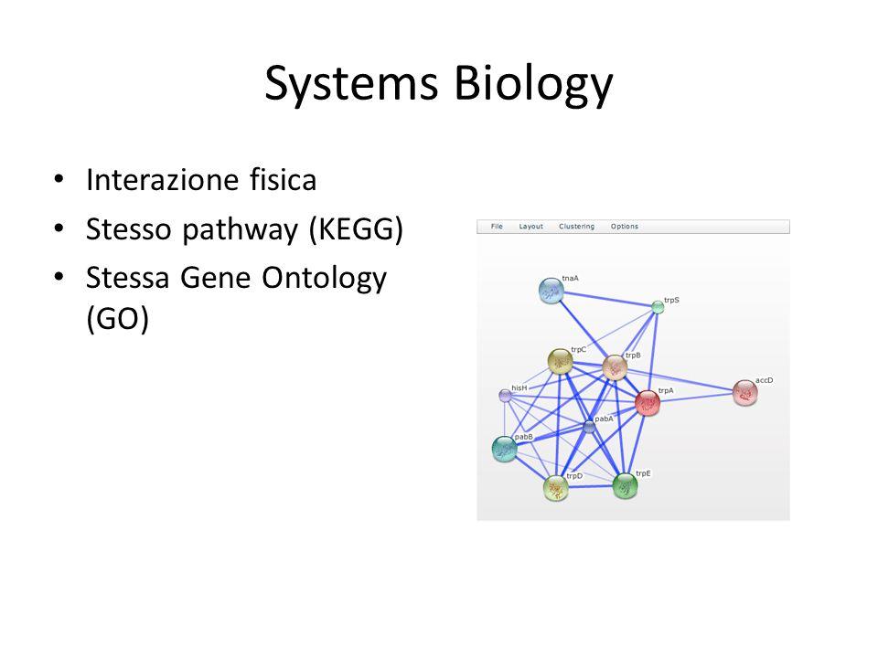 Systems Biology Interazione fisica Stesso pathway (KEGG)