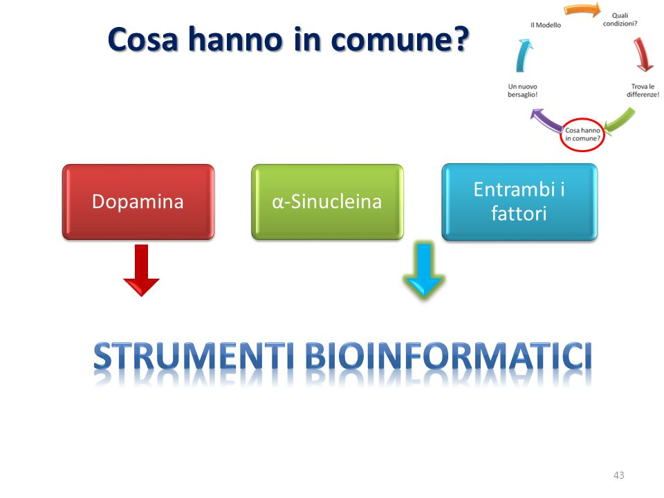 Strumenti bioinformatici
