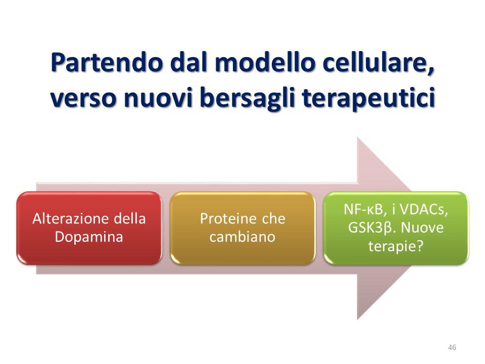 Partendo dal modello cellulare, verso nuovi bersagli terapeutici