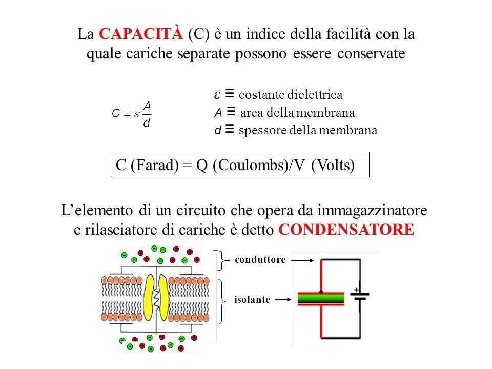 ε ≡ costante dielettrica