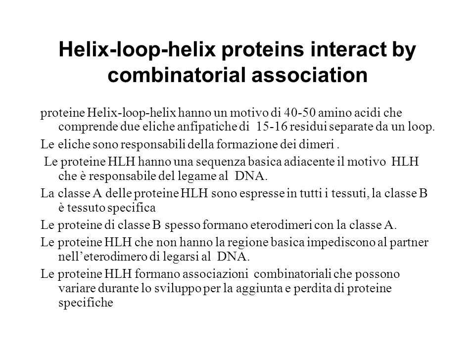 Helix-loop-helix proteins interact by combinatorial association