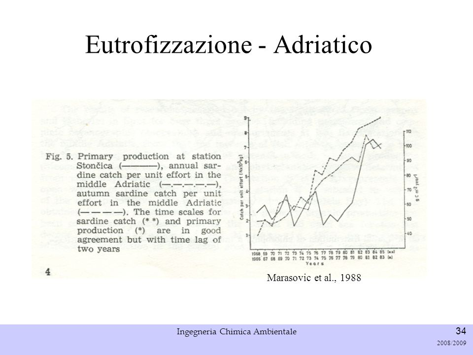 Eutrofizzazione - Adriatico