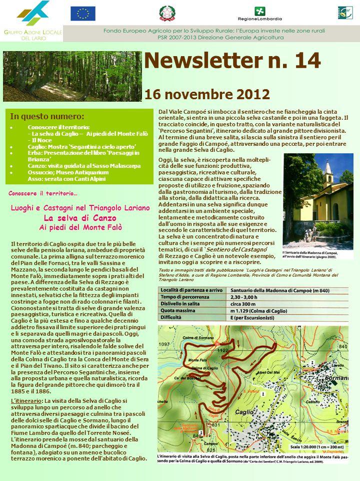 Newsletter n. 14 16 novembre 2012 In questo numero: