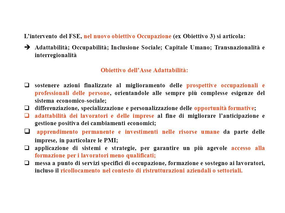 Obiettivo dell'Asse Adattabilità: