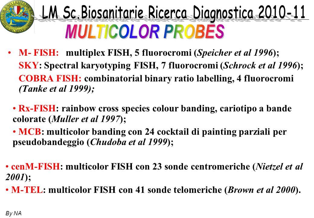 MULTICOLOR PROBESM- FISH: multiplex FISH, 5 fluorocromi (Speicher et al 1996); SKY: Spectral karyotyping FISH, 7 fluorocromi (Schrock et al 1996);