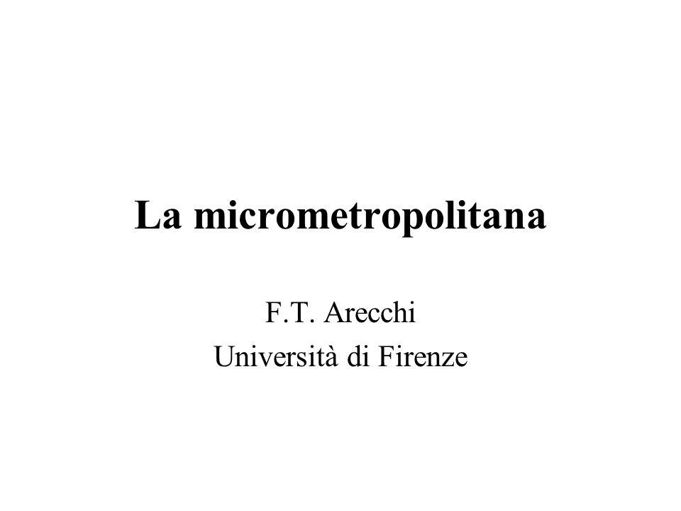 La micrometropolitana