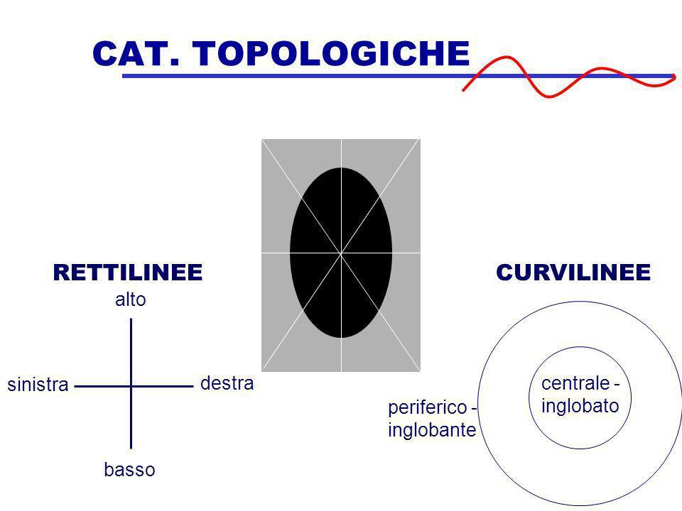 CAT. TOPOLOGICHE RETTILINEE CURVILINEE alto destra basso sinistra