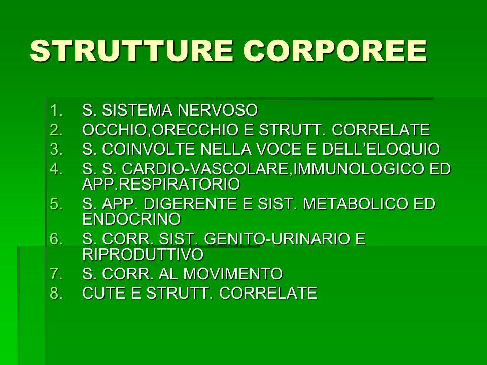 STRUTTURE CORPOREE S. SISTEMA NERVOSO