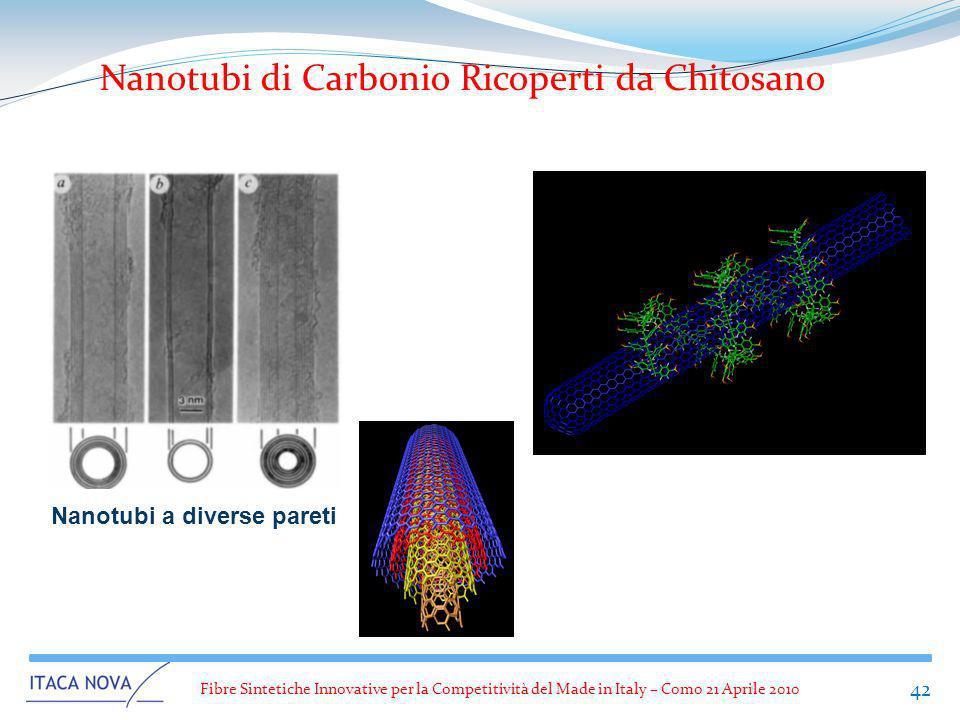 Nanotubi di Carbonio Ricoperti da Chitosano