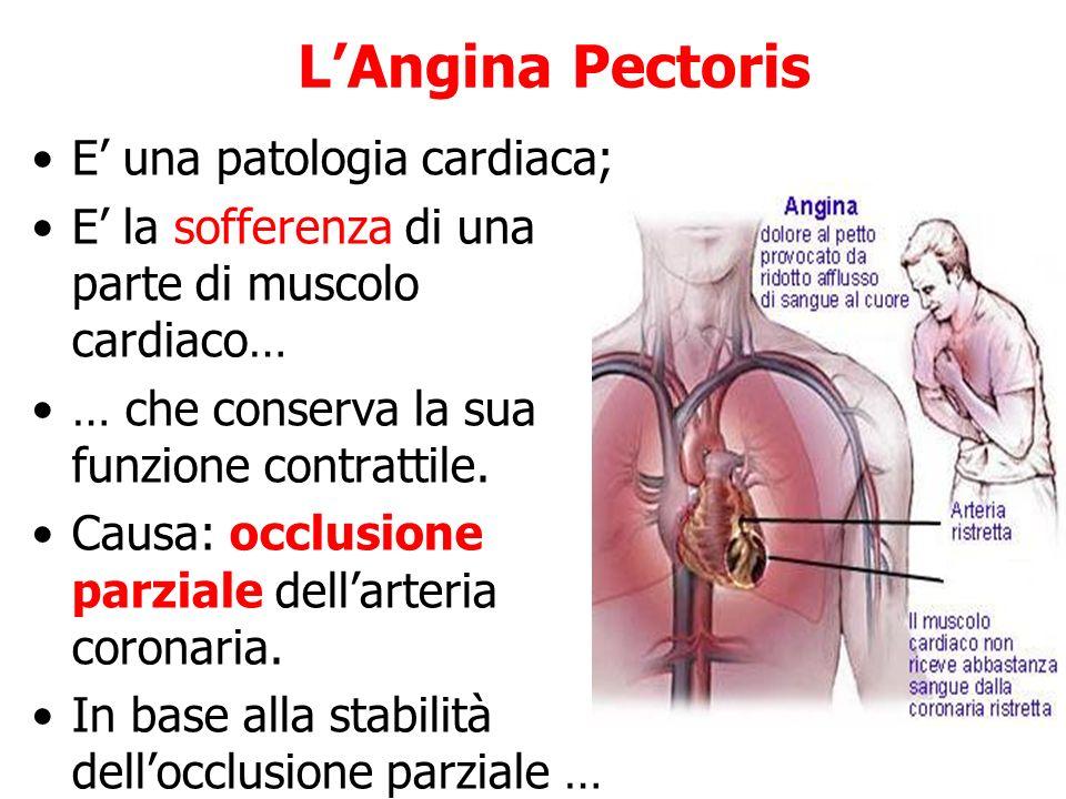 L'Angina Pectoris E' una patologia cardiaca;