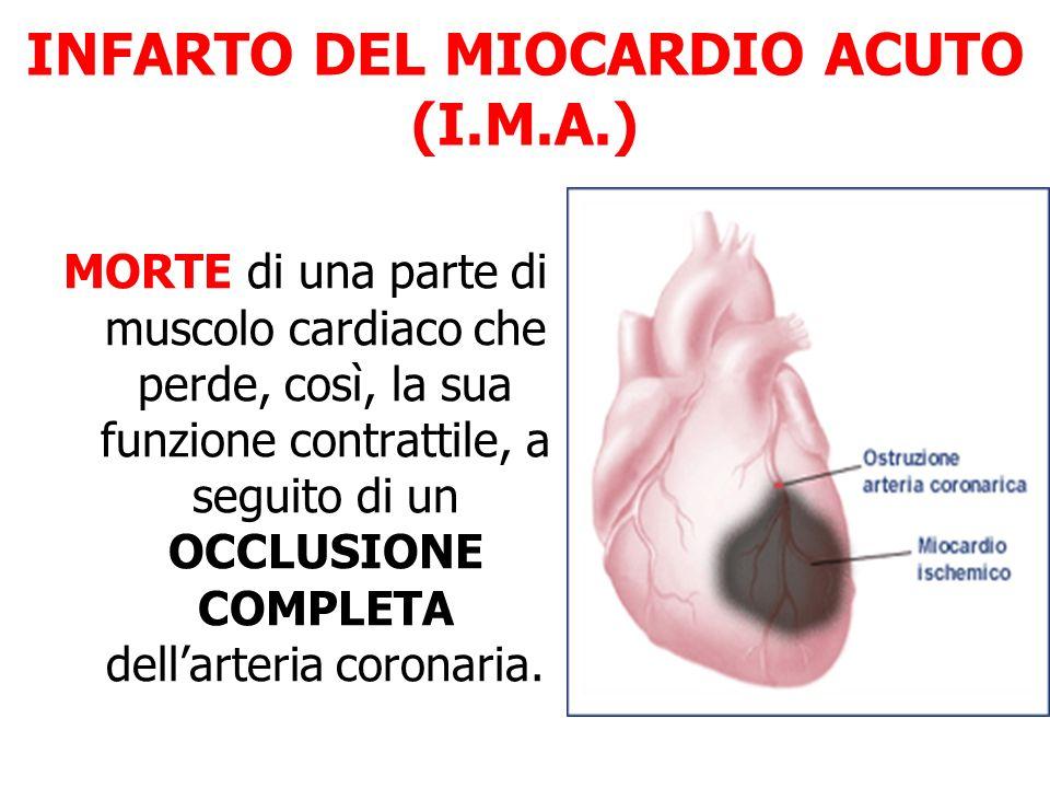 INFARTO DEL MIOCARDIO ACUTO (I.M.A.)