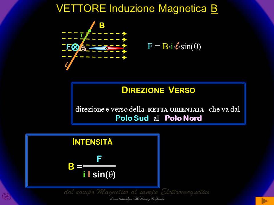 VETTORE Induzione Magnetica B