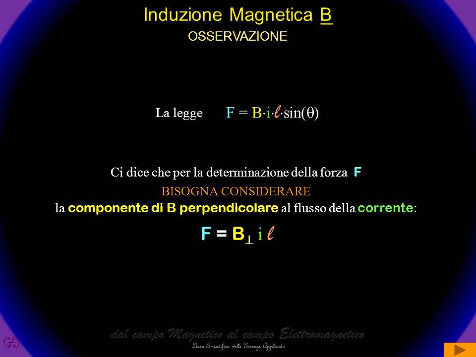 Induzione Magnetica B F = B i l osservazione F = Bilsin()