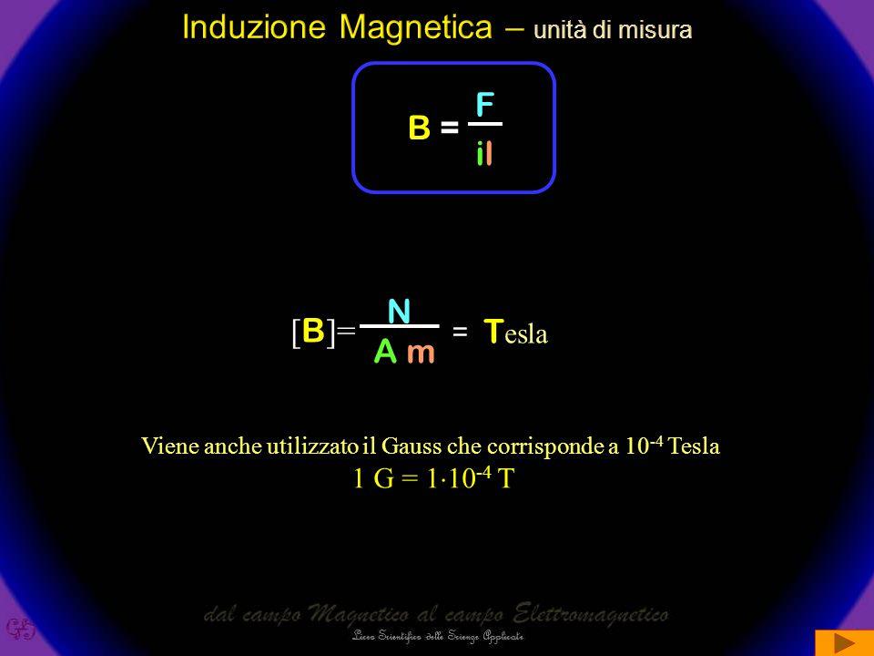Induzione Magnetica – unità di misura