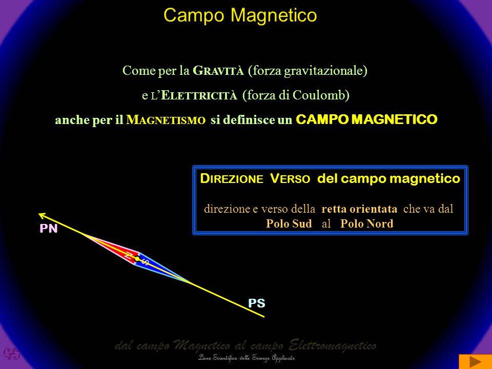anche per il Magnetismo si definisce un CAMPO MAGNETICO