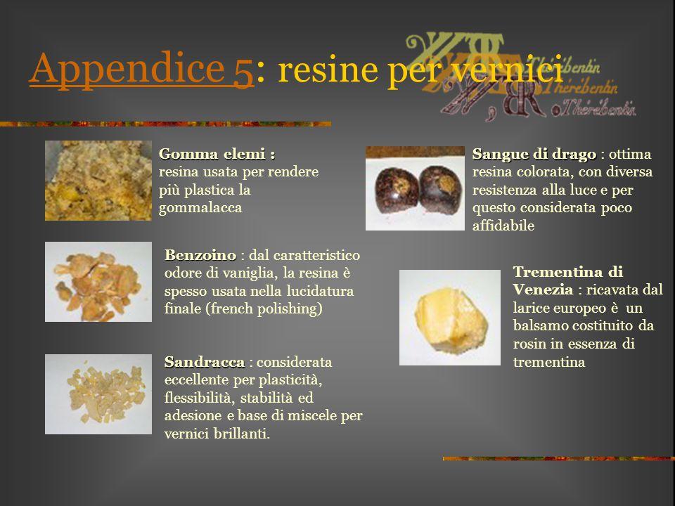 Appendice 5: resine per vernici