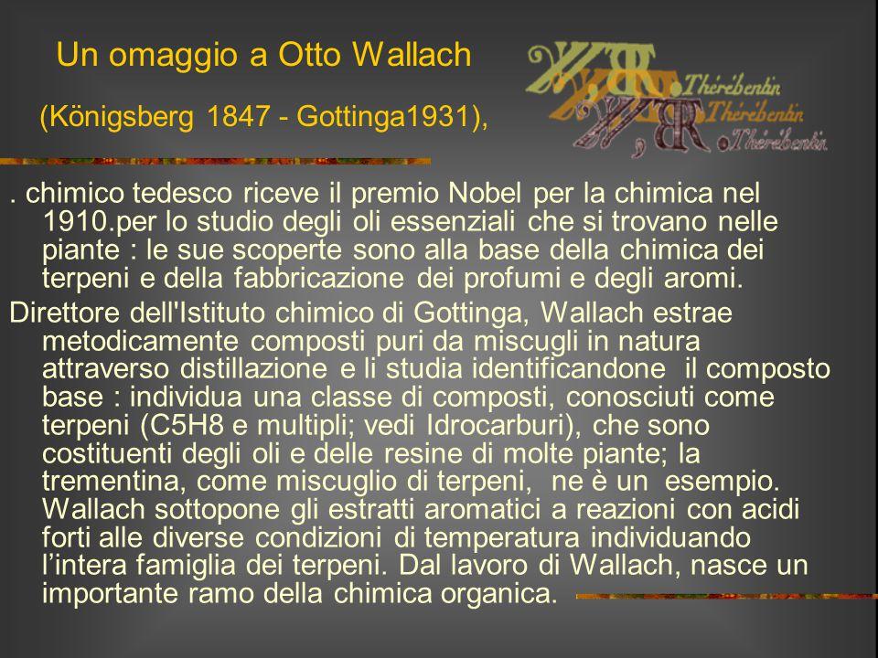 Un omaggio a Otto Wallach (Königsberg 1847 - Gottinga1931),