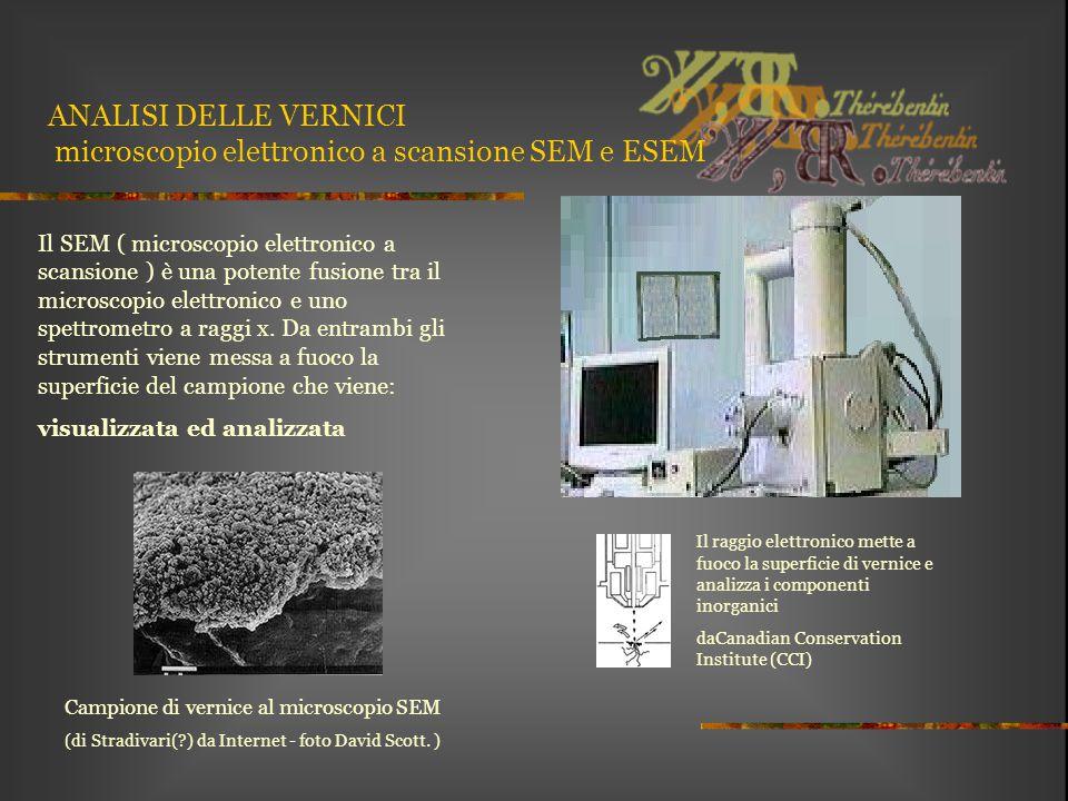 ANALISI DELLE VERNICI microscopio elettronico a scansione SEM e ESEM