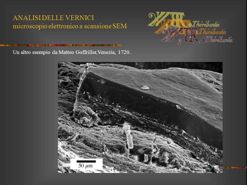 ANALISI DELLE VERNICI microscopio elettronico a scansione SEM