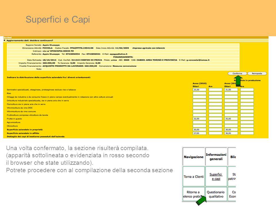 Superfici e Capi Una volta confermato, la sezione risulterà compilata.