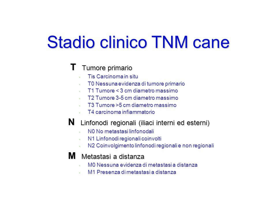 Stadio clinico TNM cane