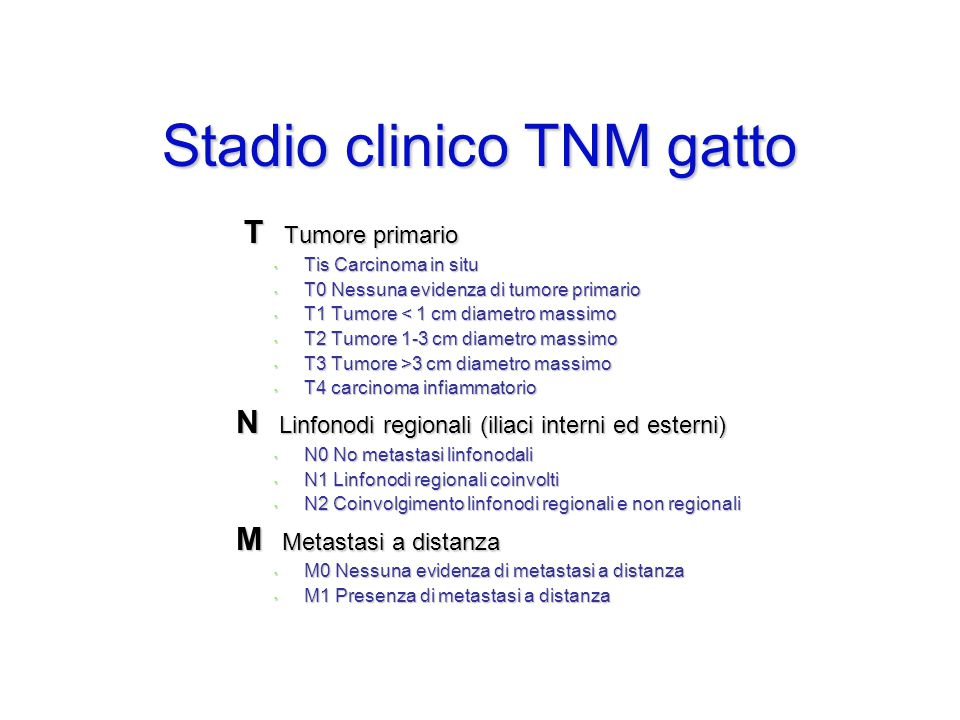 Stadio clinico TNM gatto
