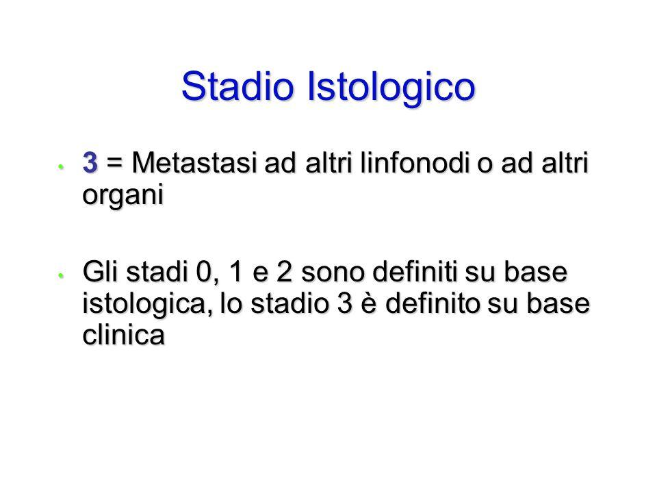 Stadio Istologico 3 = Metastasi ad altri linfonodi o ad altri organi