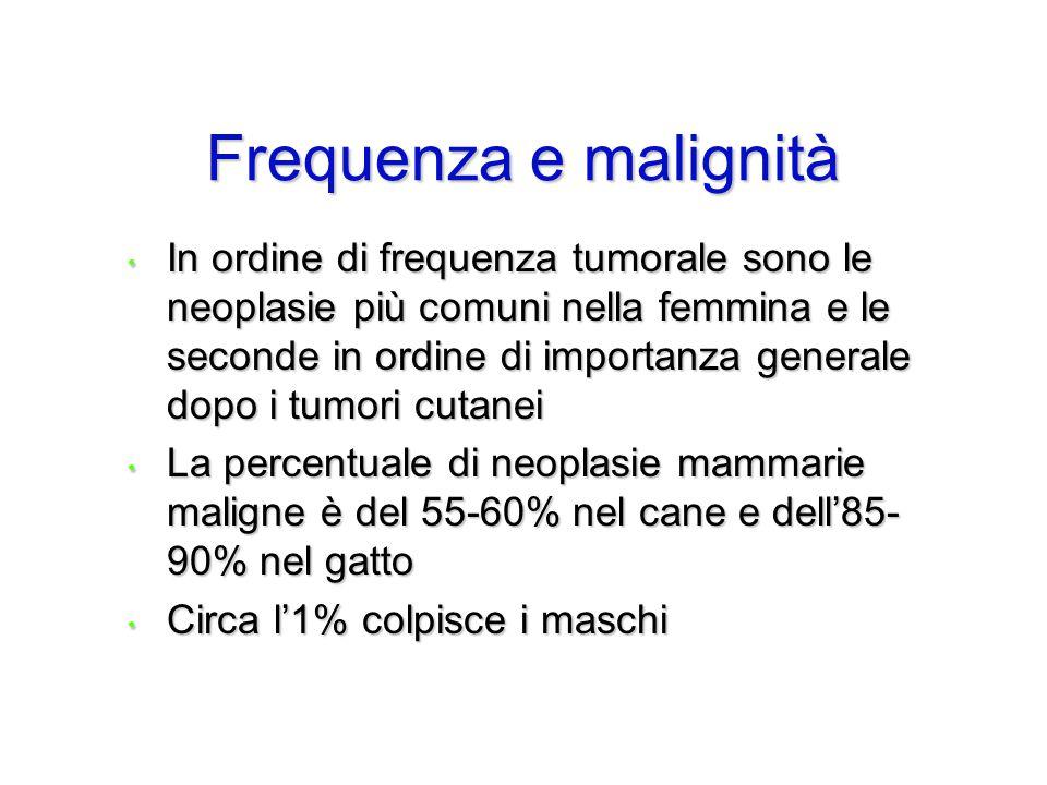Frequenza e malignità