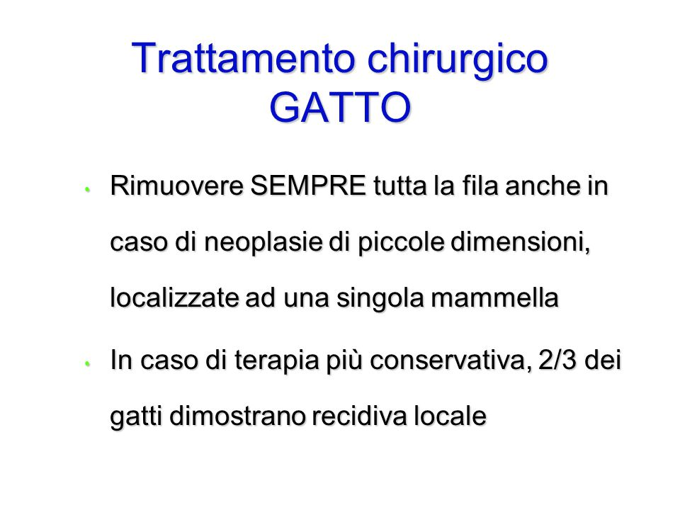 Trattamento chirurgico GATTO