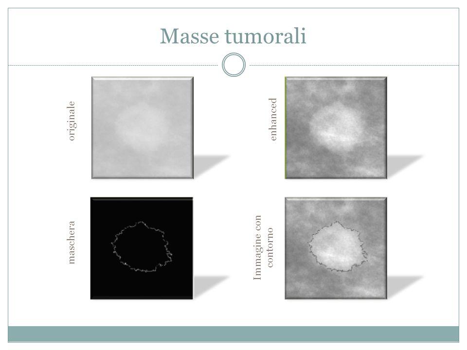 Masse tumorali enhanced originale maschera Immagine con contorno
