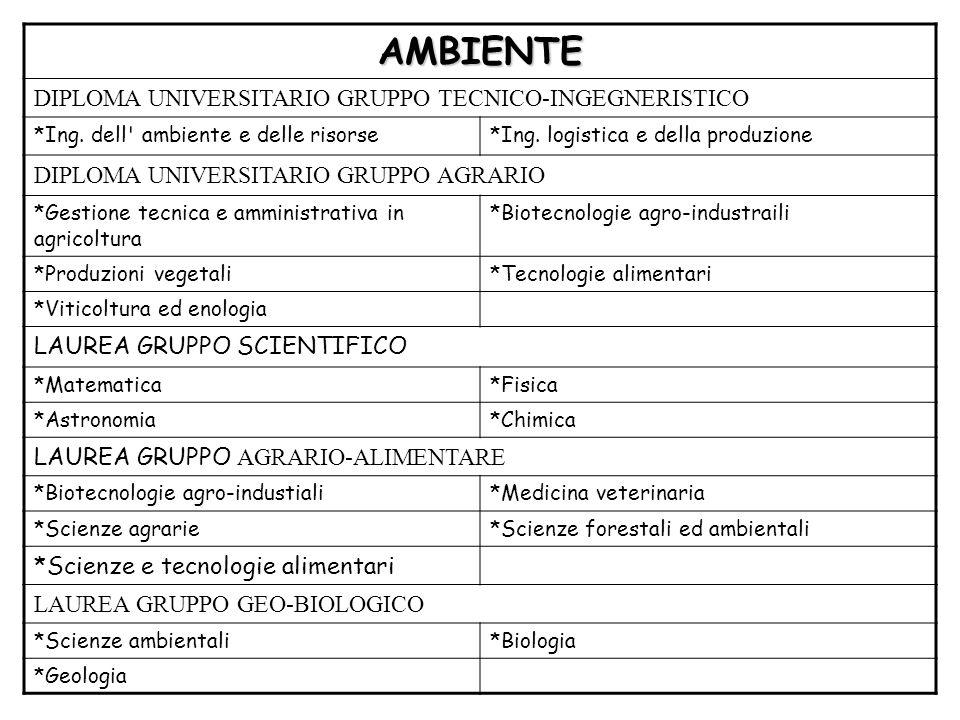 AMBIENTE DIPLOMA UNIVERSITARIO GRUPPO TECNICO-INGEGNERISTICO