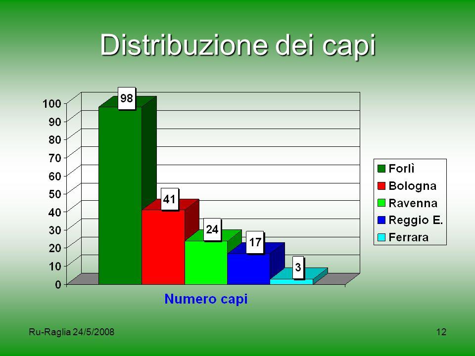 Distribuzione dei capi